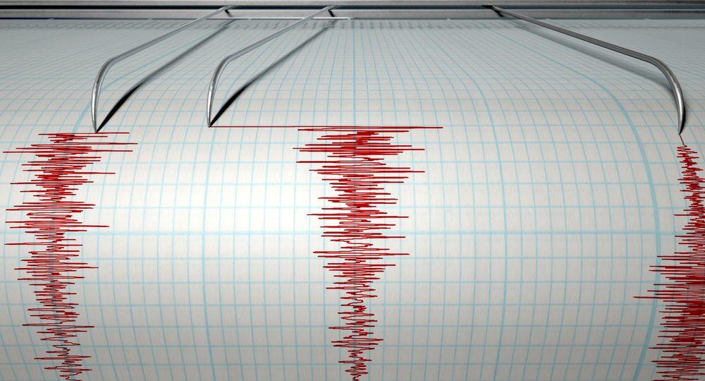 Trzęsienie ziemi w Lizbonie : 4,9 stopni w skali Richtera